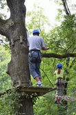 Children at ropes course on the trees — Stock Photo