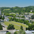 Summer view of Lourdes — Stock Photo #19413817