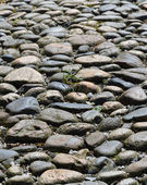 Background of the cobbled road — Stock Photo