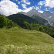 Royalty-Free Stock Photo: Pyrenees in summer