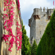 Courtyard of the medieval castle restored — Stock Photo #21178537