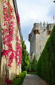 Courtyard of the medieval castle restored — Stock Photo