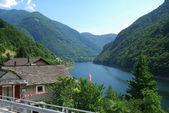 Summer Swiss Alps — Stock Photo