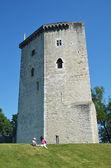Tour Moncade in Orthez — Stock Photo