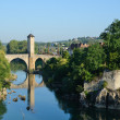 famous medieval bridge in the old french town orthez — Stock Photo #22751443