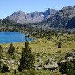 Neouvielle nature reserve in the summer Pyrenees - Stock Photo