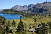 Neouvielle nature reserve in the summer Pyrenees — ストック写真