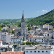 Summer view of Lourdes — Stock Photo #24195925