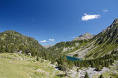 Neouvielle nature reserve in the summer Pyrenees — Stock Photo
