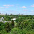Panorama of the National Botanical Garden in Kyiv — Stock Photo