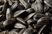 Close-up of black oil sunflower seeds — Stock Photo