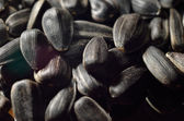 Background of black oil sunflower seeds — Stock Photo