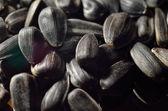 Background of black oil sunflower seeds — Stock Photo