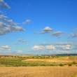 Spanish country landscape in spring — Stock Photo