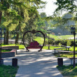 Shady park in summer — Stock Photo