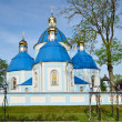 Ukrainian landmark, the Orthodox church — Stock Photo