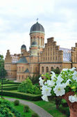 Chernivtsi National University — Stockfoto