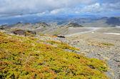 Widok wiosna sierra nevada — Zdjęcie stockowe