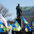 Stock Photo: Celebration of Taras Shevchenko's birthday in Kyiv