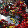 Sorrowful Maidan filled with flowers and candles — ストック写真
