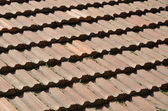 Background of the tiled roof — Stock Photo
