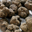 Stock Photo: Truffle