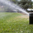 Irrigation of garden — Stock Photo