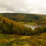 Autumn over to Derwent valley — Stock Photo