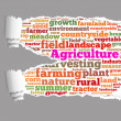 Torn Paper with agriculture info-text graphics — Stock Photo