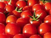 Organické cherry rajčata — Stock fotografie