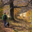 A walk with a friend — Stock Photo #14332239