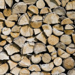 Logs — Stock Photo #29177433