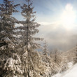 Stock Photo: Fresh winter in the mountains