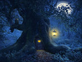 Tree home in the magic forest — Stock Photo