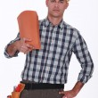Stock Photo: Handyman holding roof tiles