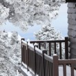 Snowy balcony — Stock Photo #13825951