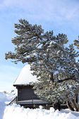 Snowy cabin — Stock Photo
