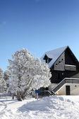 风景如画的雪盖的房子 — 图库照片