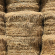 Closeup on haystacks - Stock Photo