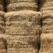 Stock Photo: closeup on haystacks