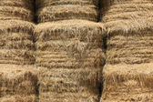 Closeup on haystacks — Stock Photo