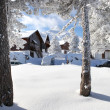Chalets on the snow - Stock Photo