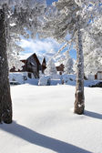 Chalets on the snow — Stock Photo