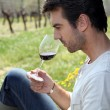 Man tasting wine in field Dubroca_Joffrey_140410 — Stock Photo