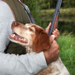Hunter with his dog — Stock Photo