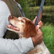 Hunter with his dog - Stock Photo