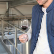 Stock Photo: Winemaker in plant
