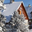 Winter chalets - Stock Photo