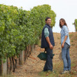 Couple surrounded by vines — Stock Photo #14033042