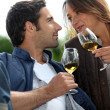 Couple drinking wine in a vineyard — Stok fotoğraf
